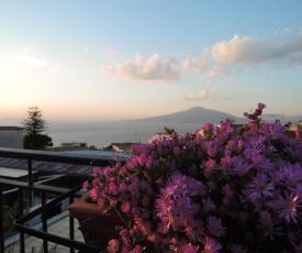 Garden House Pompei Vesuvio